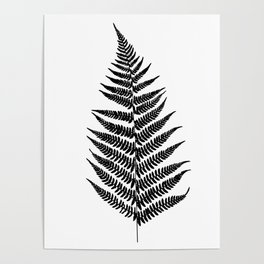 Fern silhouette Poster