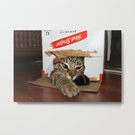 Red Stripe Kitty Metal Print