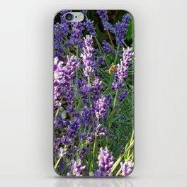Bumblebee 10 on lavender ahem honey bee actually iPhone Skin
