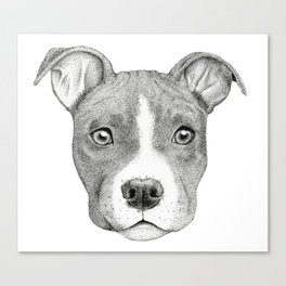 Staffordshire Terrier Dog Canvas Print