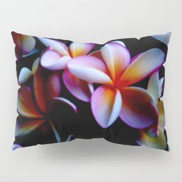 Flowers With a Black Background Pillow Sham