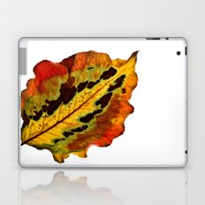 Fall Leaf Laptop & iPad Skin