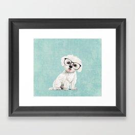 Mr Maltese Framed Art Print