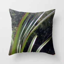 Sunlight Strikes the Screw Pine Throw Pillow