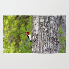 Red-headed Woodpecker Rug