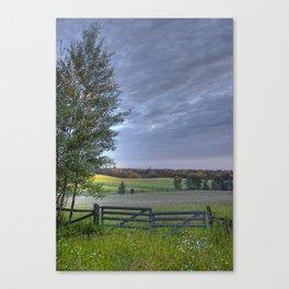 Summer Pasture Canvas Print
