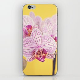 Pink orchid blossoms iPhone Skin