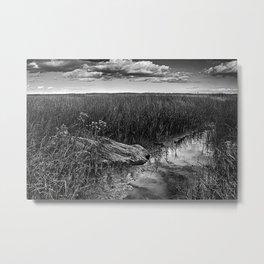 Wood In The Marsh Metal Print