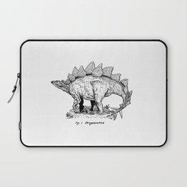 Figure One: Stegosaurus Laptop Sleeve