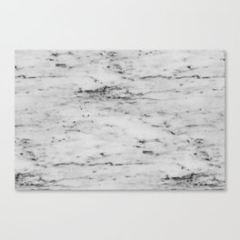 White Marble with Black Flecks Canvas Print
