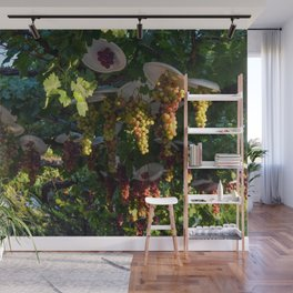 Grapevine Day Fade (Cyprus) Wall Mural