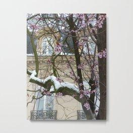 Winter and spring meet II Metal Print