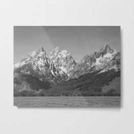 Ansel Adams - Grass Valley and Grand Tetons Metal Print