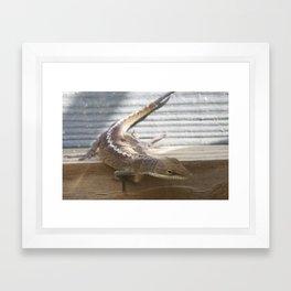 Beach House Lizard Framed Art Print