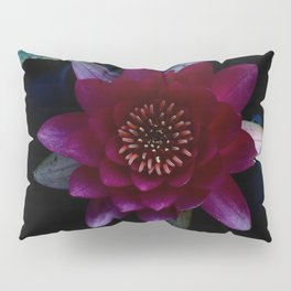 Water Lilly Pillow Sham
