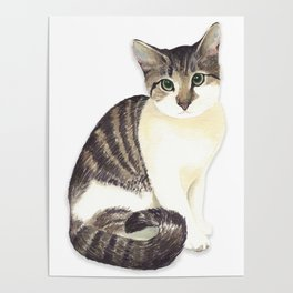 Charming the fat cat that likes to eat a lot Poster
