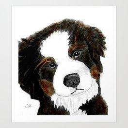 Bernese Mountain Dog Love Art Print