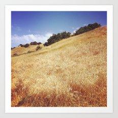 Hillside, Marin County, CA Art Print