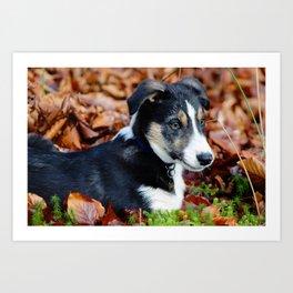 Puppy Perfection Art Print