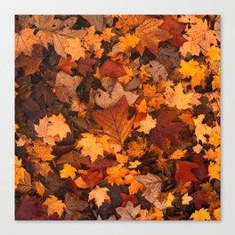 Autumn Fall Leaves Canvas Print