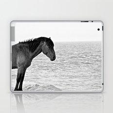 Assateague Pony Laptop & iPad Skin