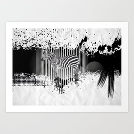 Zebra (Equiferus). Art Print