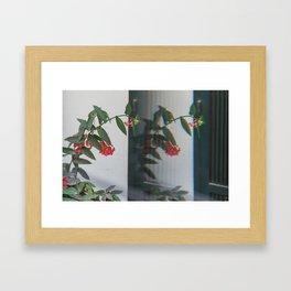 Reflections 1 Framed Art Print