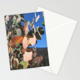 Aspen Leaves, Colorado Stationery Cards