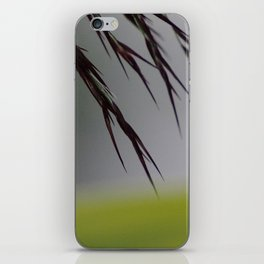 Evening hay iPhone Skin