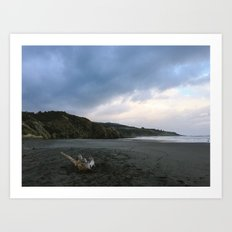 Black beach - New Zealand Art Print