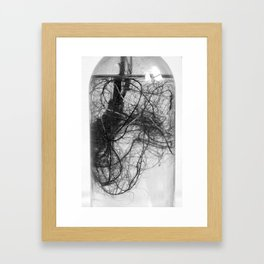 floating roots in bottle Framed Art Print
