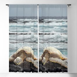 Hawaiian Honu - Sea Turtle Blackout Curtain