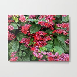 mixed flowers and leaves Metal Print