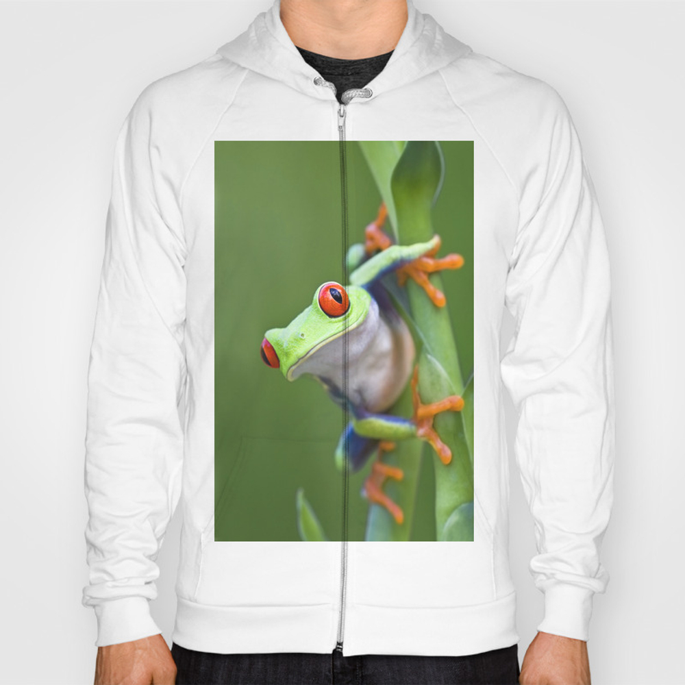 Red-eyed Tree Frog Hoody by Markkostich SSR975116
