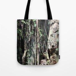 Liana and Rocks Tote Bag