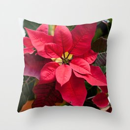 Red and Green Poinsettia Photography Print Throw Pillow