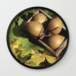 Fall still life pear pyrus fruit in wooden basket on maple leaves Wall Clock