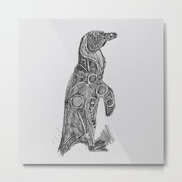Black Footed African Penguin Metal Print