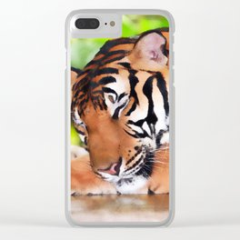 Sleeping Tiger Clear iPhone Case
