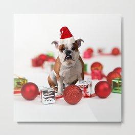 Bulldog Christmas Gift Box Ornaments Red Santa Hat Metal Print