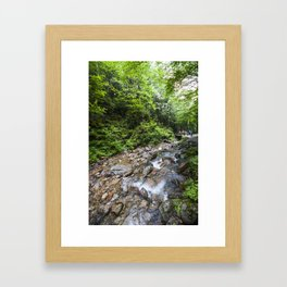 Flume Gorge New Hampshire 3 Framed Art Print