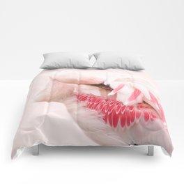 Flamingo pink Comforters