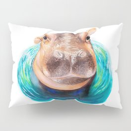 Curious Fiona Pillow Sham