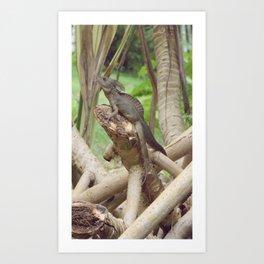 Jesus Lizard Art Print