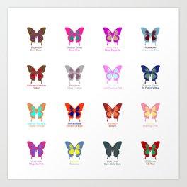 Butterflies 16 Art Print