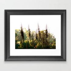 But You Should Have Seen It Earlier! Framed Art Print