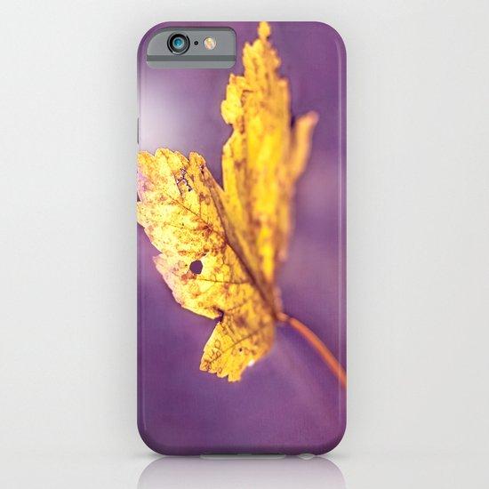MAPLE iPhone & iPod Case