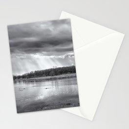 Birdland BW Stationery Cards