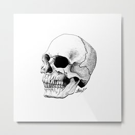 Dire Skull - A Macabre Warning Metal Print