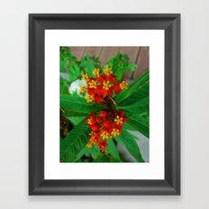 Orange and Yellow Flowers Framed Art Print